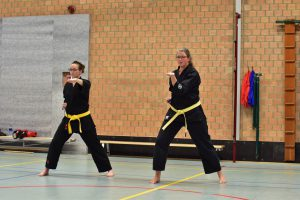 karate training Daidokan