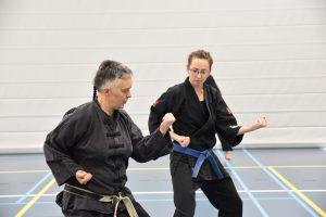 Shuri Ryu karate kata training