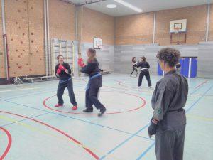 Shuri Ryu karate training